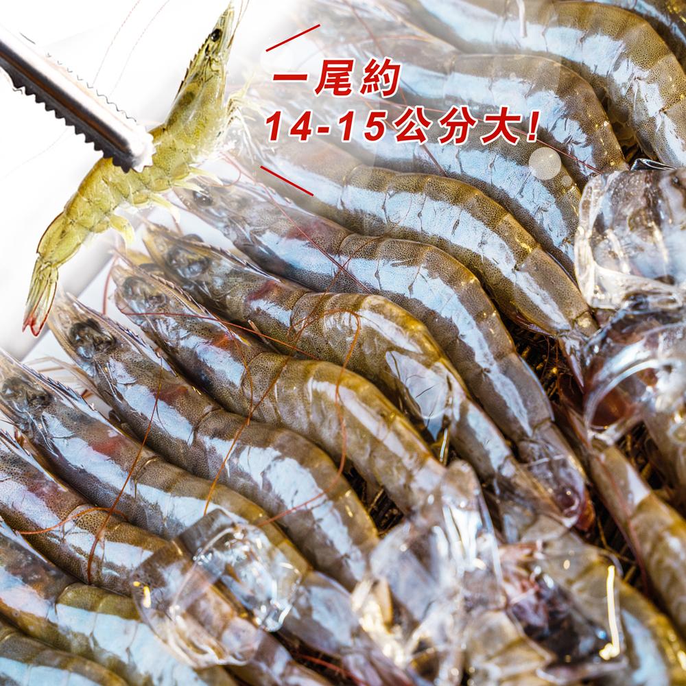 活鮮急凍 巨特級大白蝦<1.15公斤±10%>